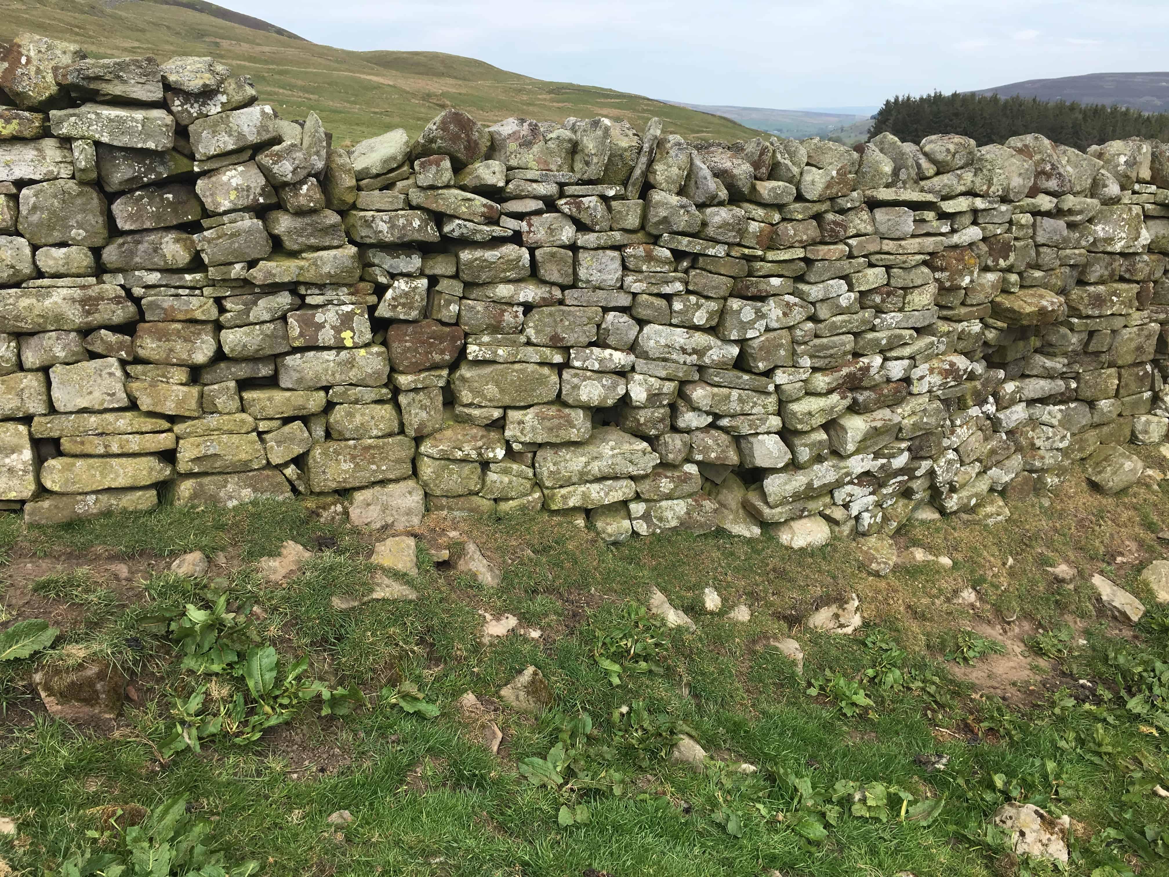 Help us breakdown a wall